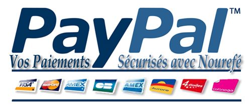 Logo page paypal nr